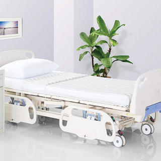 Electric Hospital Bed DD-M21